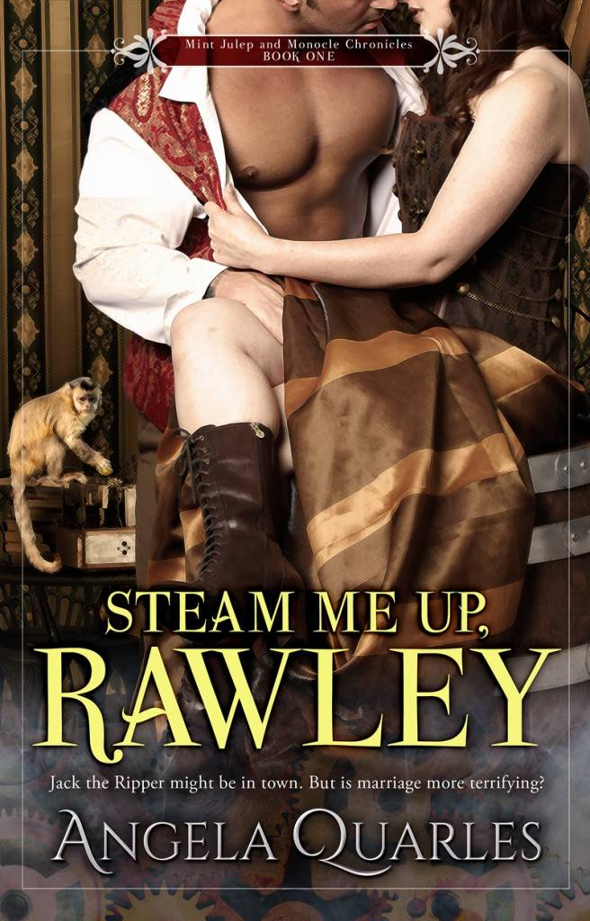 Book Cover: Steam Me Up, Rawley